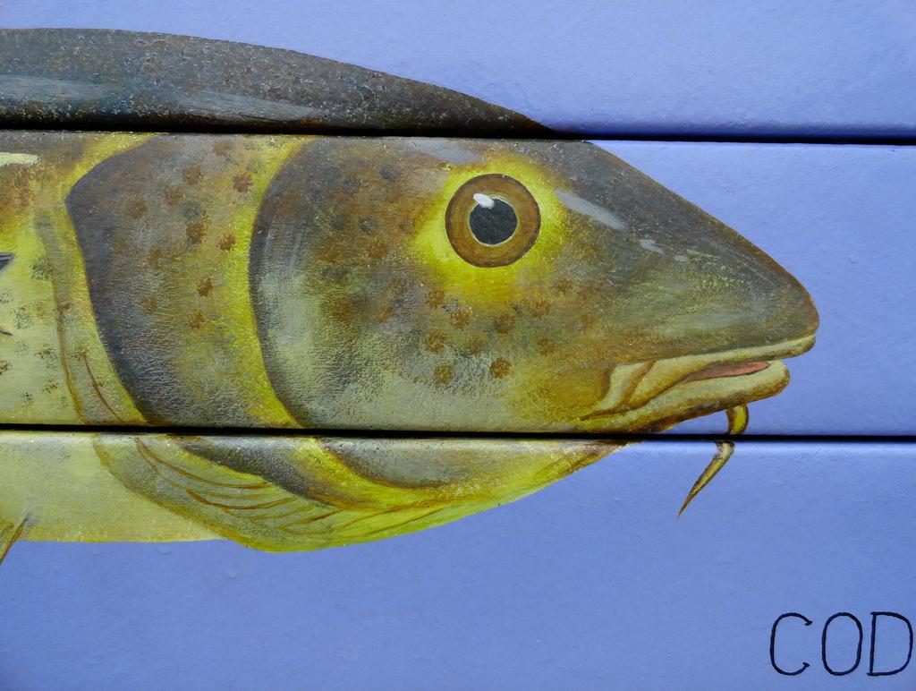 cod wayneandboat