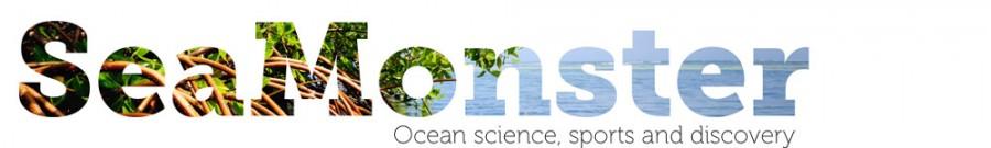 Seamonster-logo-26e