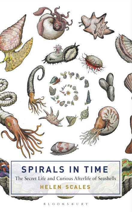 Spirals in Time, the secret life and curious afterlife of seashells. Helen Scales. Bloomsbury Sigma 2015.