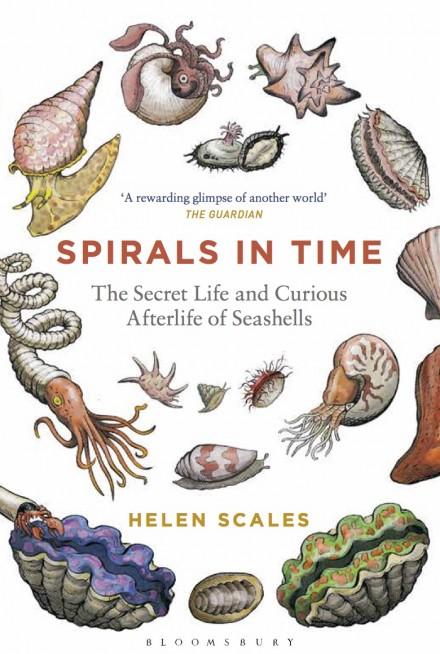 spirals-paperback