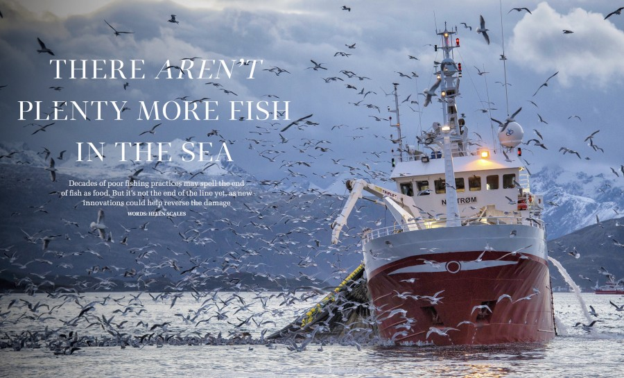 overfishing-front-page
